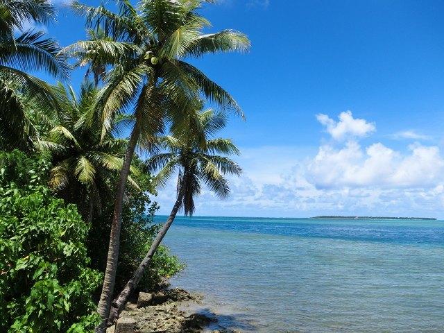 緑とグアムの海